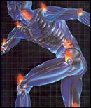 musculosartificiales