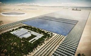 fabrica-oasis